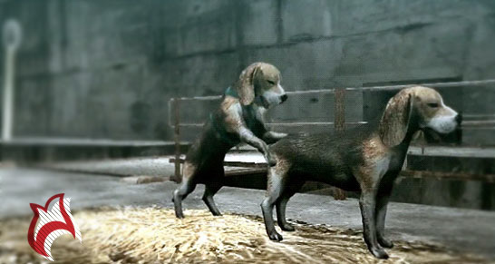 tokyo-jungle-ps3-review-breeding-massvio.com_