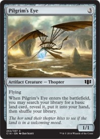Pilgrims+Eye+C14