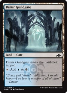 Dimir+Guildgate+245+GRN