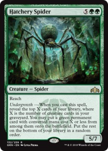 Hatchery+Spider+GRN
