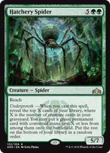 Hatchery+Spider+GRN