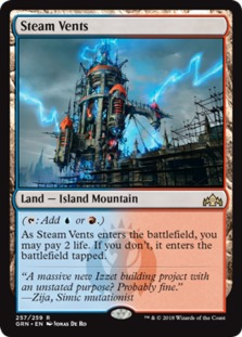 Steam+Vents+GRN