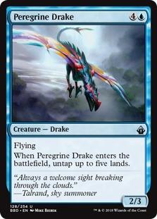Peregrine+Drake+BBD